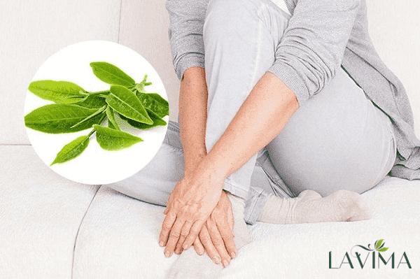 Trị ngứa vùng kín bằng trà xanh có thực sự tốt?